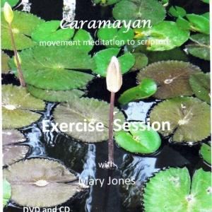 Ex S cover